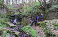 Fairy glen walking festival